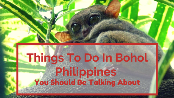 Things To Do In Bohol Philippines