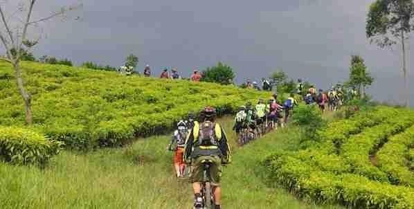 Biking in Ubud Bali
