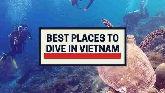 Best Places To Dive in Vietnam