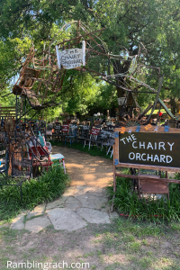 Denton, Texas: The Chairy Orchard