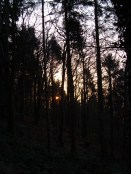 credenhill-dawn-feb-13-2