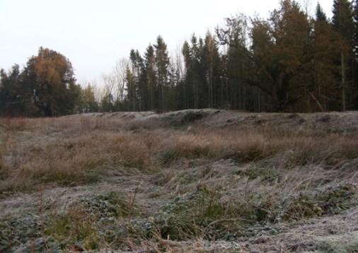 frosty-rampart