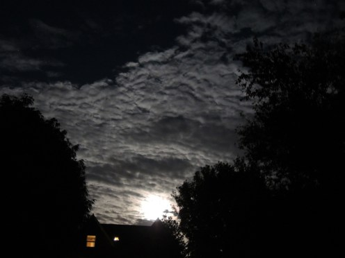 moonlit-clouds-4