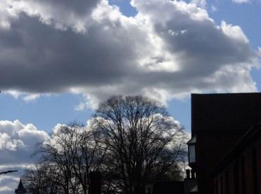 Photos of cumulus clouds