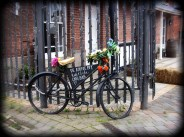 Photo of bicycle decorated with flowers advertising a cafe