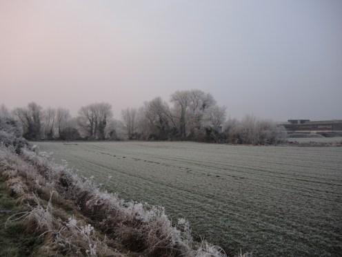 frosty-field-4
