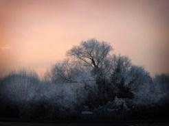 frosty-sunrise-2