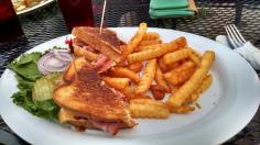 Friday: Grilled ham and cheese and fries. They were a precious, precious commodity at this place.