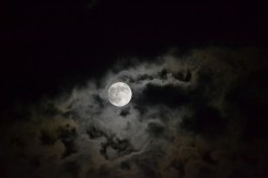 cool moon and clouds