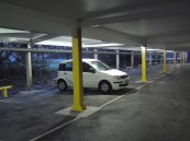 My Pandy all alone in car park 7