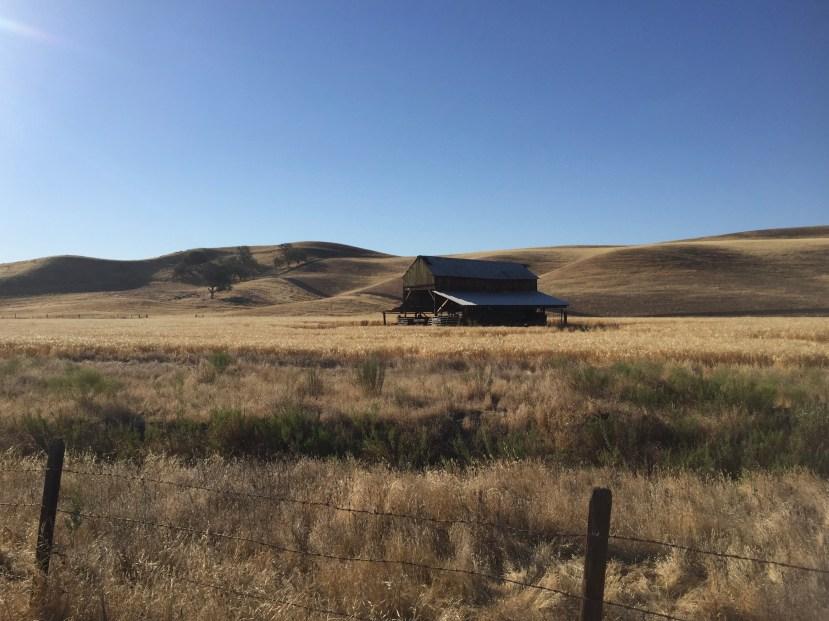 Solitary Barn