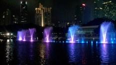 Night Light Show_5