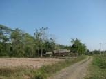 Ucok's Neighborhood