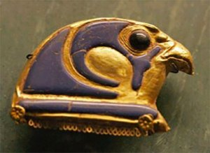 Falco Pellegrino Horus