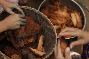 sabut kelapa