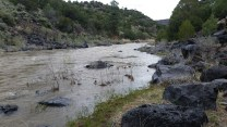 The beautiful Rio Grande, NM