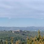 L'Umbria si aggiudica le Tre Foglie della guida agli Oli d'Italia 2021 del Gambero Rosso