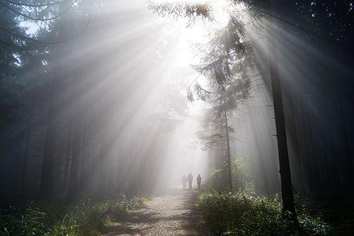 Austria, il parco Attersee-Traunsee è senza inquinamento luminoso