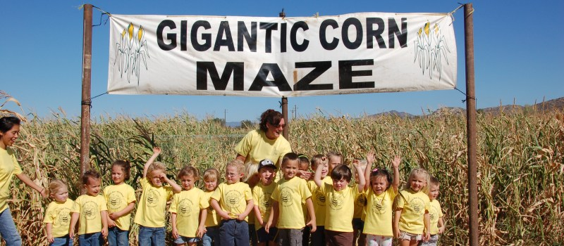 Mountain Valley Ranch Corn Maze