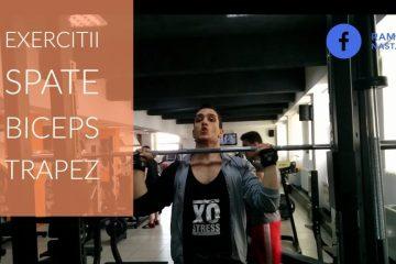 exercitii antrenament pentru spate biceps si trapez la sala