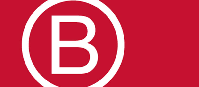 CONFESSIONS OF A B CORP WANNA B!