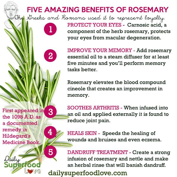 What Fresh Rosemary Good