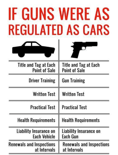 A diagram comparing drivers licenses to unfettered gun access.