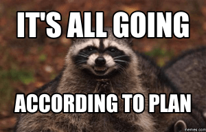 "Evil racoon: ""It's all going according to plan"""