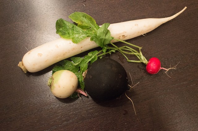 all the radishes