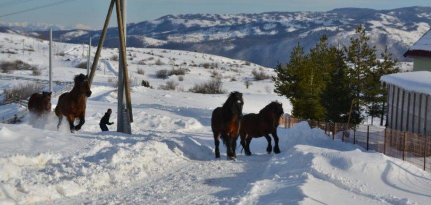 Kozo – Rama: Najradosniji  Božić je u toplini doma uz brojnu obitelj