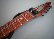 10弦 Chapman Stick、サティーネ