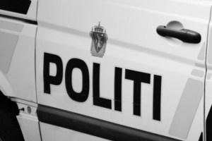 politibil