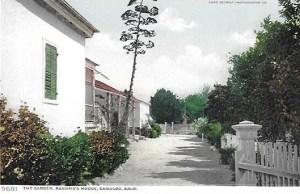 Veranda-Driveway-Postcard