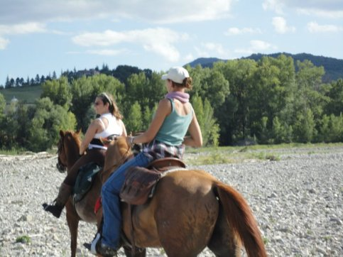 Cavalli sani, buona compagnia, fuori da tutto