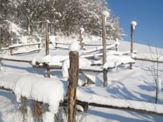 I paddock in alto, intasati di neve