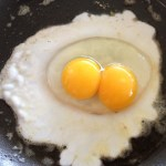 The Legendary Double Egg – Photographic Proof!