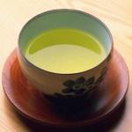 Tropical Plants for Making Tea