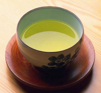 Plants for making tea