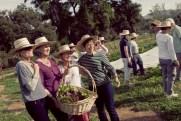 Farm Tour14