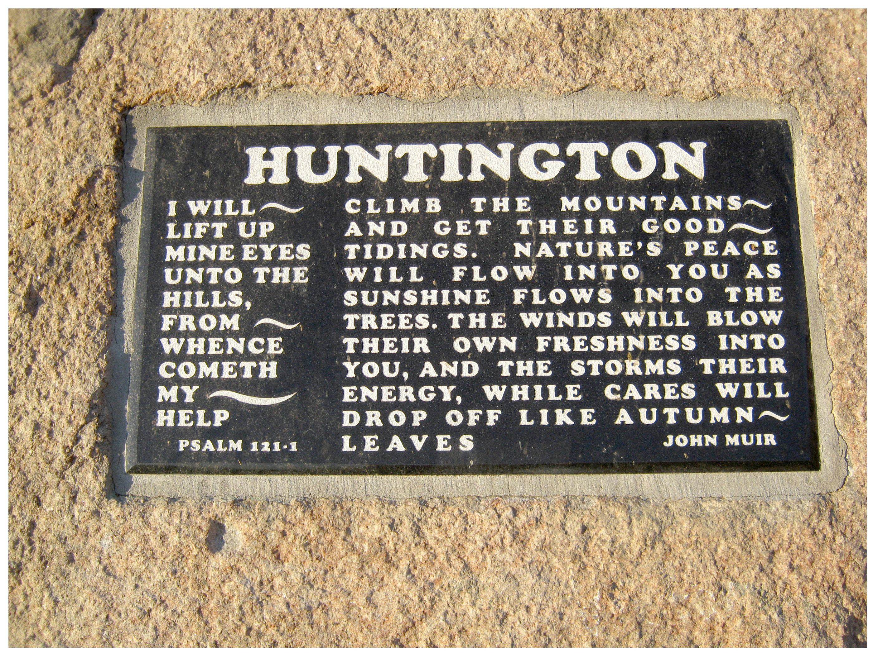 huntingtonplaque