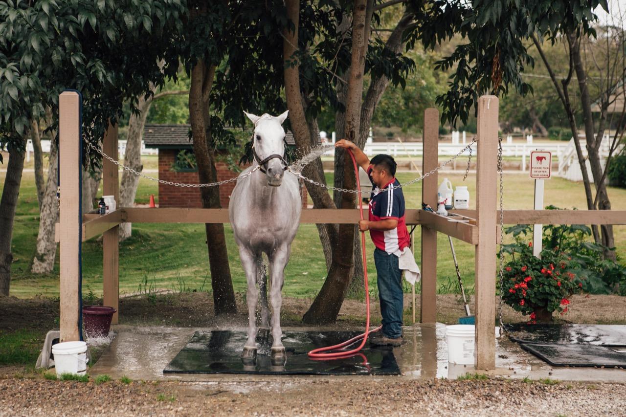 home rancho riding club