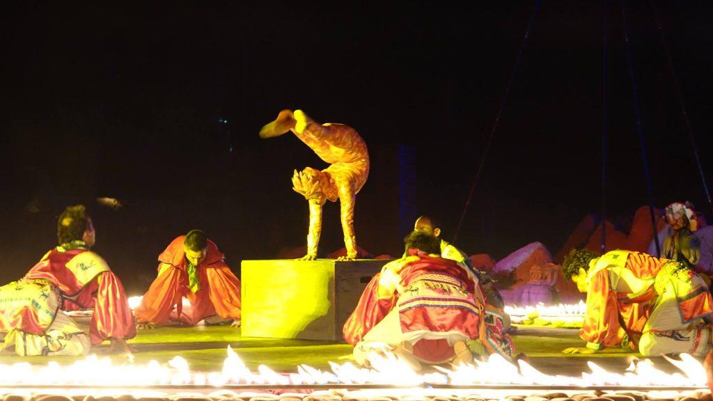Los Cabos Wirikuta Show Experience (2)