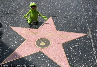 kermit's star
