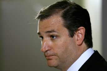 U.S. Sen. Ted Cruz, R-Texas, speaks to local residents during a fundraising picnic for the Iowa Republican Party, Friday, July 19, 2013, in Des Moines, Iowa. (AP Photo/Charlie Neibergall)