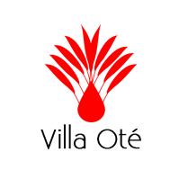 logo_vot