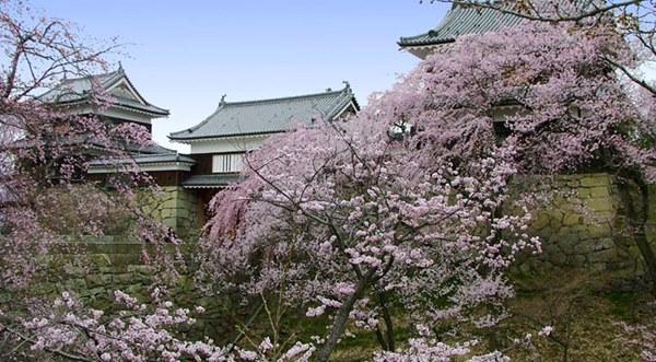 『2016 第13回上田城千本桜まつり』