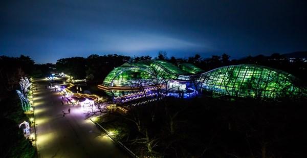 京都府立植物園 イルミネーション2017