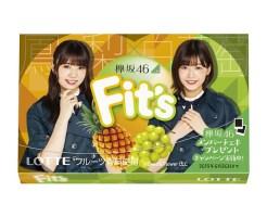 『Fit's 欅坂46ガム』