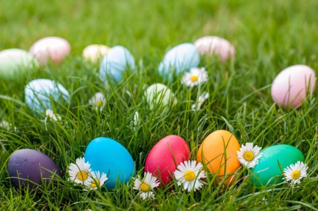 Different color Easter egg on a grass