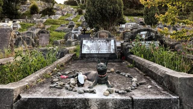 Mrs. Chippy Monument at Karori Cemetery | Wellington | New Zealand | –  RANDOM Times •